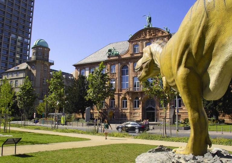 Jahrestagung Frankfurt 2017.jpg